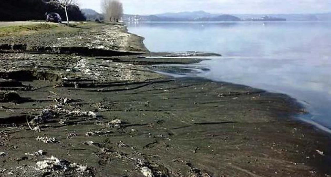 Sos lago di Bolsena, altri scarichi nel lago