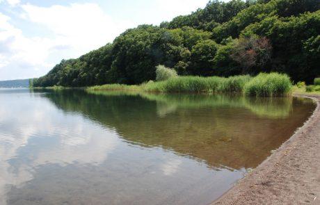 Lago di Vico, annunciato tavolo al ministero all'agricoltura